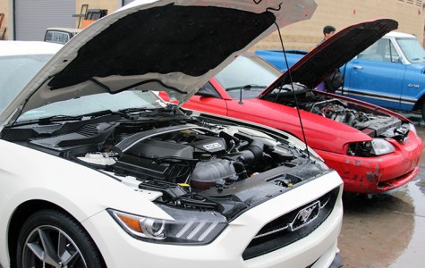 Annual car show shifts into gear