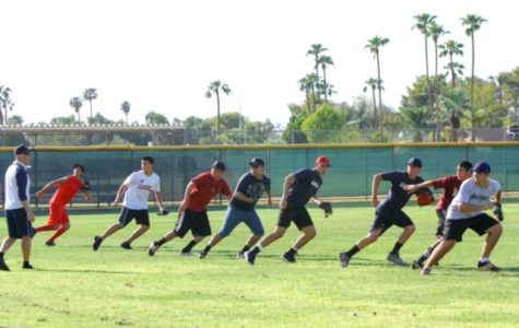 Baseball starts Open Field workouts