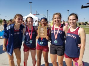 Girls Cross Country place high at meet